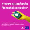 EU uppmanas förbjuda djurförsök för hushållsprodukter