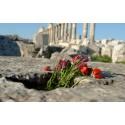 Syrien: Allt färre alternativ för framtiden