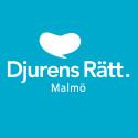 Djurens Rätt ökar medlemsantalet i Malmö med nästan 8 procent