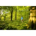 Nu får alla möjlighet att tycka till om Björka skog