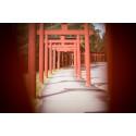 Japanska portaler på väg mot entrén till Yasuragi