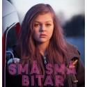 Små små bitar - en film om viktiga saker för unga