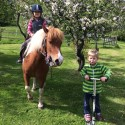 ​Got Event stödjer Horse Ride of Hope