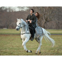 ​Horse-Riding is the Top Fantasy First Date!