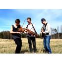 Folkmusikgruppen Triplex
