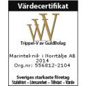Båtföretag i topp bland Sveriges starkaste företag