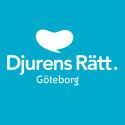 Djurens Rätt ökar medlemsantalet i Göteborg med nästan 20 procent
