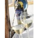 Vin i pet-flaskor gör sommarlivet lättare