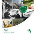 DLG Strategi 2016