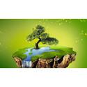 Konica Minolta er tildelt førsteplass i Nikkei Environmental Management Survey