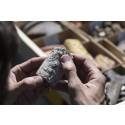 Fynd från utgrävningen vid Nya Lödöse, Foto: Ian Schemper