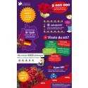 Fakta om julblommor och blomsterbud på nätet