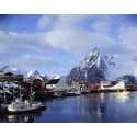2014 was a year to celebrate for Norwegian seafood exporters