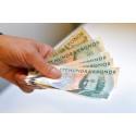 Föreläsning: Money talks – hållbara placeringar