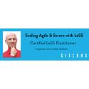 Citerus invites the Scaling Agile profile Craig Larman to Stockholm