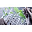 Planter skal designes til at skabe flere værdistoffer