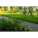 Förhandsvisning av trädgård och konst på Astrid Lindgrens Näs