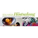 Solhaga Höstsalong – konstfesten som överraskar mitt i Stockholm city
