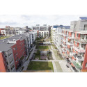 Från grön vision till verklighet i Västra Hamnen