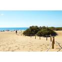 Gran Canaria väcker störst reslust i vinter