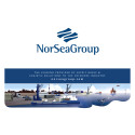 NorSea Group (NSG) standardizes and streamlines their business processes with Merit Consulting.