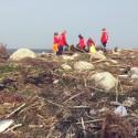 Allt skräpigare stränder på Västkusten – 40% mer skräp sedan 2014