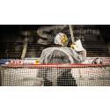En människa som är mycket mer än en ishockeymålvakt