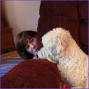 Hundkollen: 5 aktiveringstips inomhus för din hund