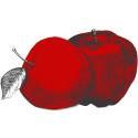 Fruktförmedlingen öppen