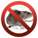 JAFO RAT-EXX Logo
