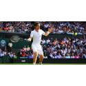 Hvem vinder Wimbledon og Det Britiske F1?