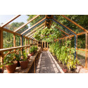 Planthouse twelve ger mycket plats för odling