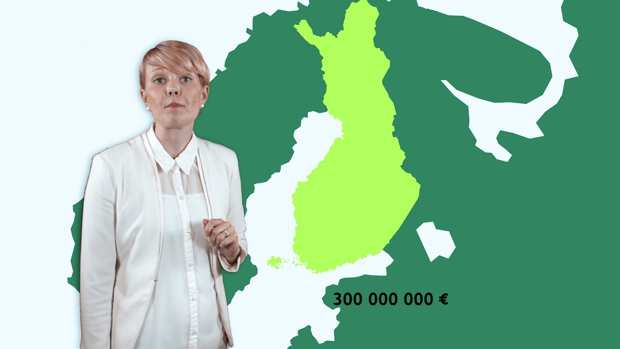 Alkoholisää - Korkea verotus kotimaassa ajaa ostajat Viroon