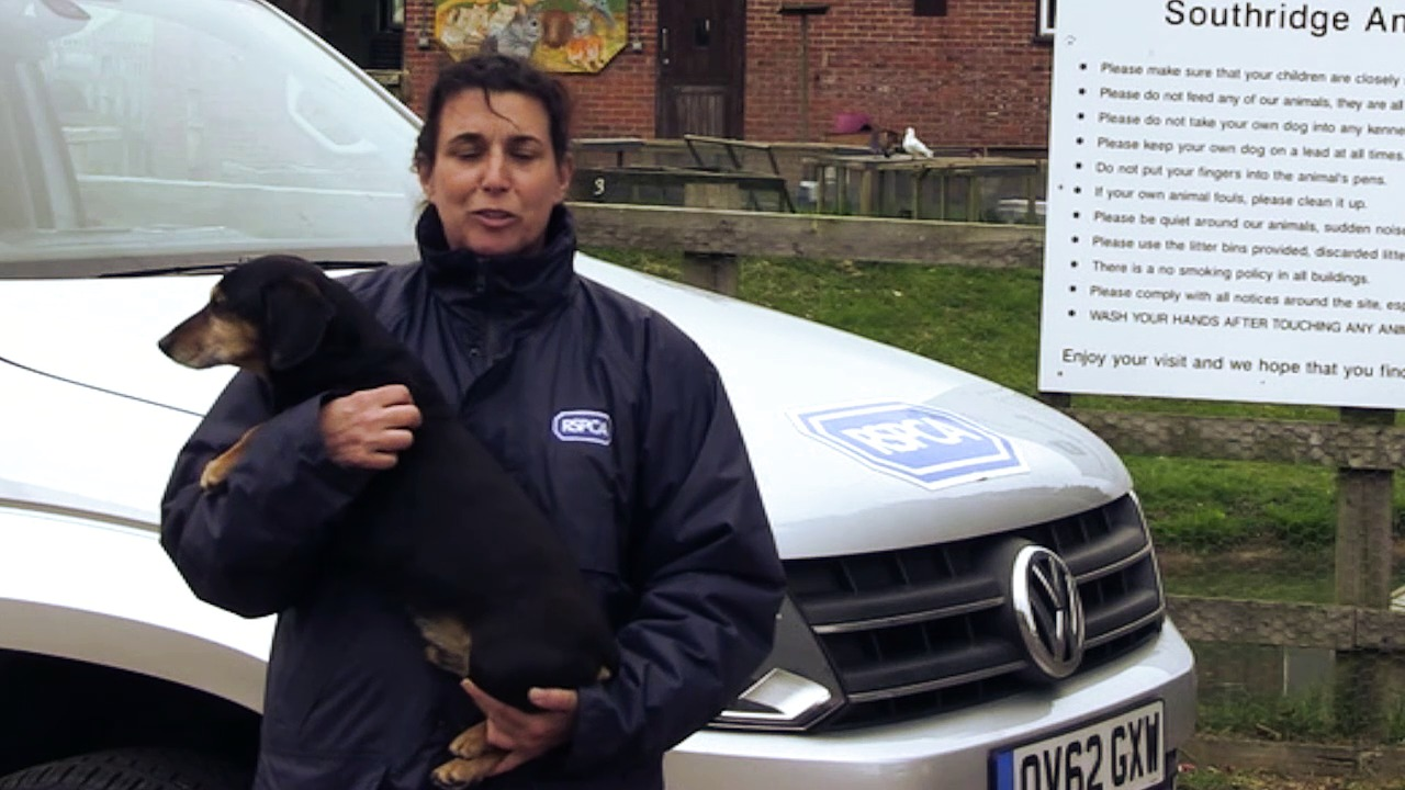 VW Amarok performs animal magic as RSPCA celebrates a year at the wheel