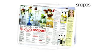 Nominerat bidrag i PR-kategorin Guldägget 2009: Snapas