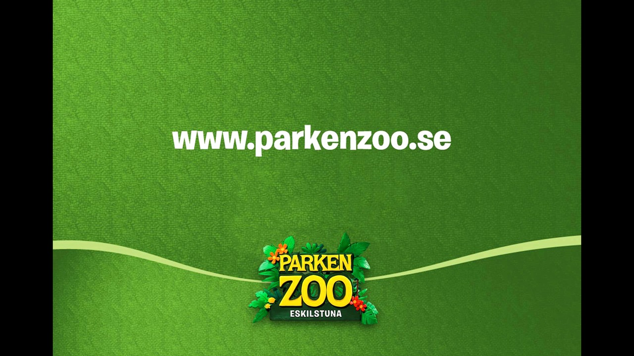 Amurleopardunge född i Parken Zoo Eskilstuna