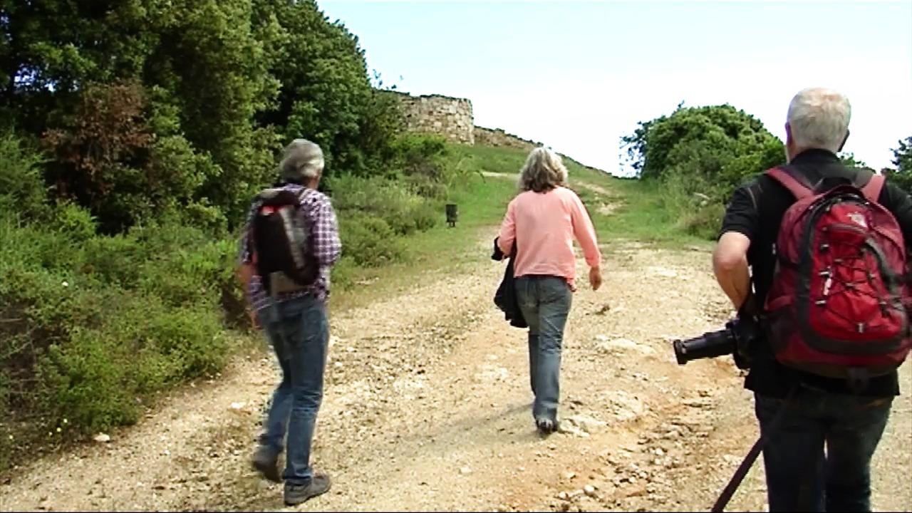 Olympiada - Aristotelian Walk