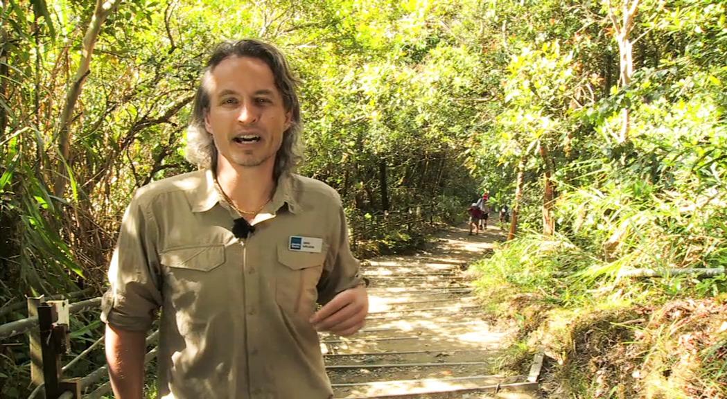 Jambo Explorer - för dig som vill ha äventyr och vara aktiv på din semester.