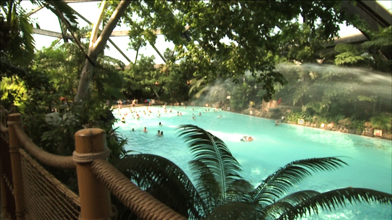 Sherwood Forest Subtropical Swimming Paradise