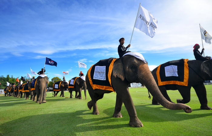 Anantara's King's Cup Elephant Polo Tournament