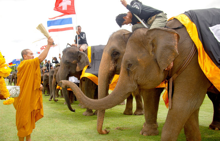 Anantara King's Cup Elephant Polo Tournament monk blessing