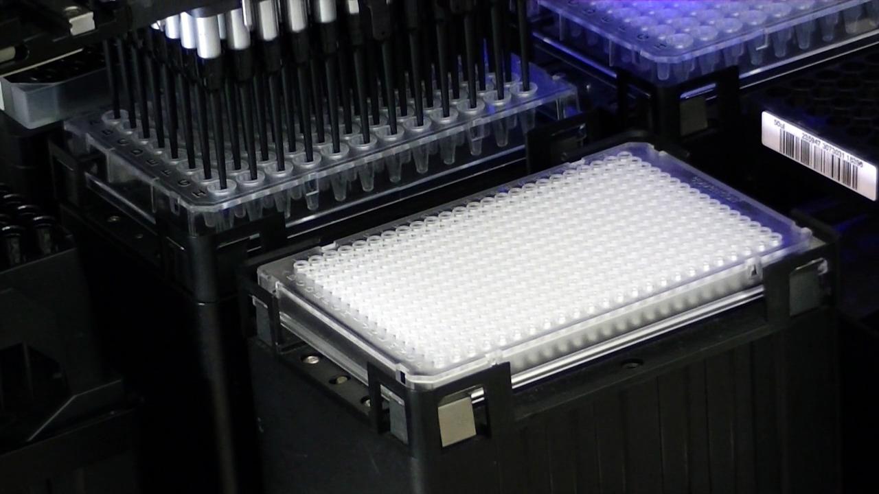 NIMBUS 96 - PCR 96-384 plate reformatting